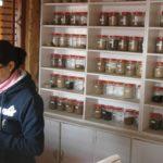 Prepared herbal medicines